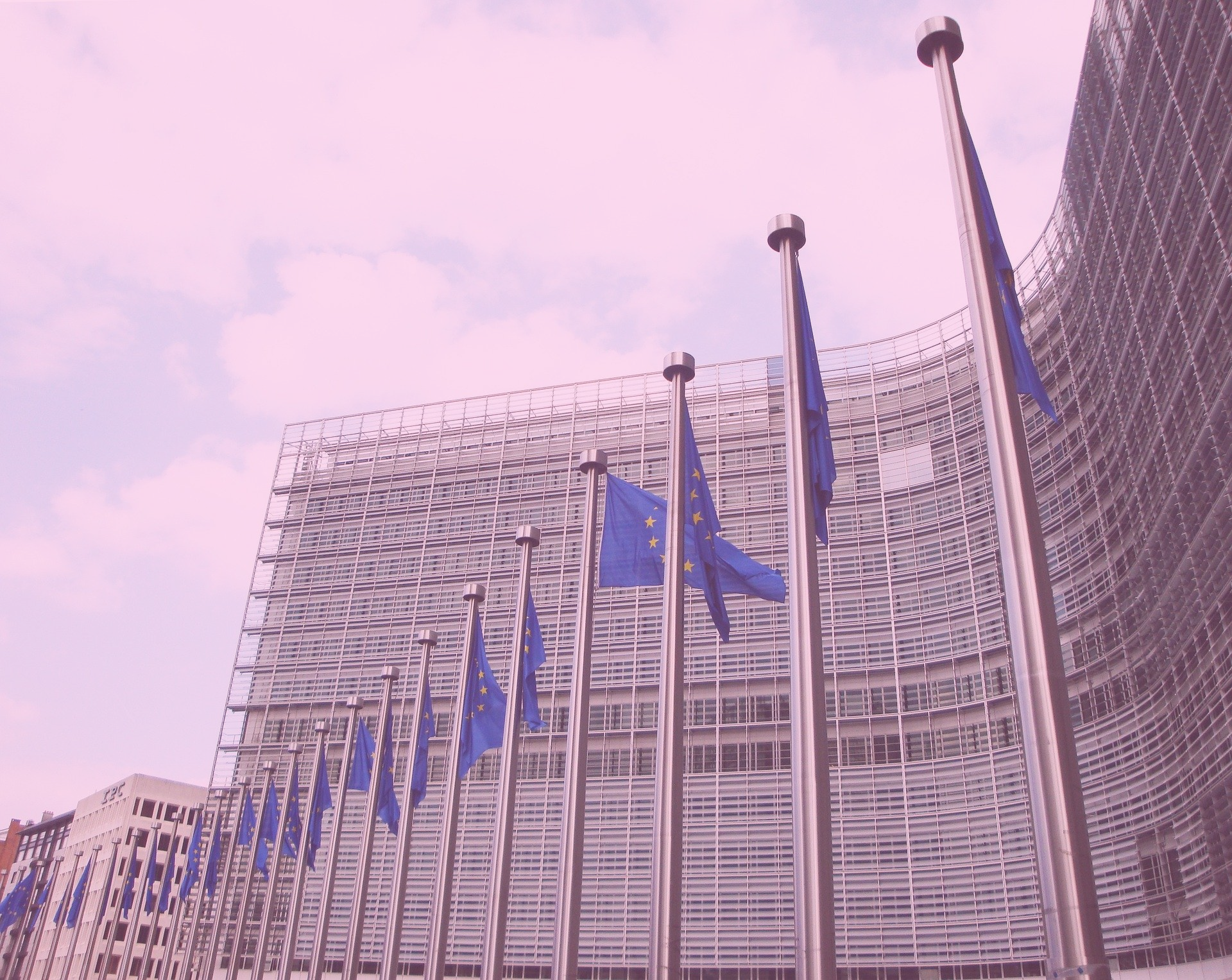Wouter van der Brug, Sebastian Adrian Popa, Sara B Hobolt, Hermann Schmitt – Illiberal democratic attitudes and support for the EU